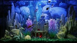 Aquarium Deko Steine : aquarium einrichtung sorgt f r das wohlf hlen der wassertiere lifestyle aquarium aquarium ~ Frokenaadalensverden.com Haus und Dekorationen