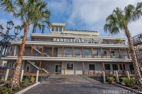 paddlefish  disney springs