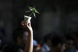 Vermont Marijuana Legalization: New Bill To Regulate Pot ...