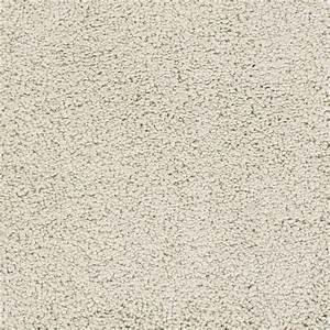 Shop stainmaster trusoft chimney rock cream beige almond for Modern beige carpet texture
