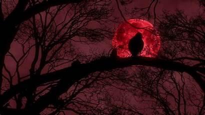 Moon Scary Blood Raven Creepy Crow 1080