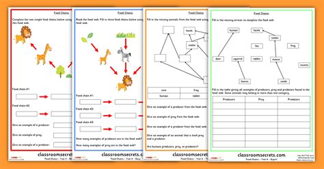 year 3 science worksheets free uk homeshealth info