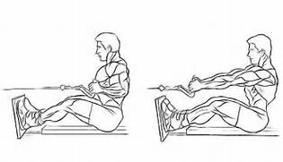 Seated-Cable-Row jpg
