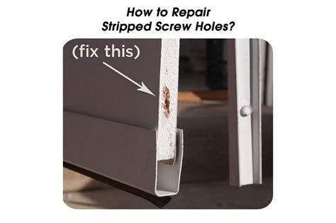 how to fix stripped in wood fix stripped screw hole wood