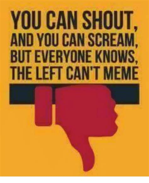 Scream And Shout Meme - you can shout and you can scream but everyone knows the left can t meme meme on me me