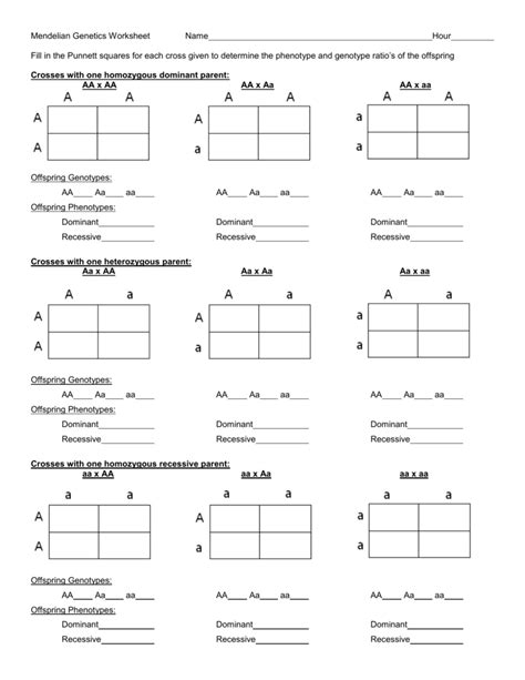 best of mendelian genetics worksheet goodsnyc