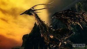 Quick, Shots, -, Dark, Souls, Artorias, Of, The, Abyss, Edition, Shots, Are, Beautiful