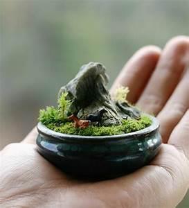 Zen Garten Miniatur : so k nnen sie einen mini zen garten kreieren ~ A.2002-acura-tl-radio.info Haus und Dekorationen