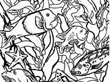Kelp Forest Drawing Aquarium Monterey Coloring Getdrawings Bay sketch template