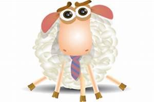 Le Mouton A 5 Pattes : soft skills parler de soi pour aller au del du cv ~ Louise-bijoux.com Idées de Décoration