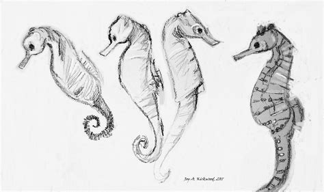 Seahorses Art By Joy A Kirkwood