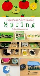 Les 2040 meilleures images du tableau Montessori sur ...