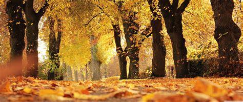 Wallpaper Desktop Hd by Wallpaper Ultrawide Autumn Warnerwave