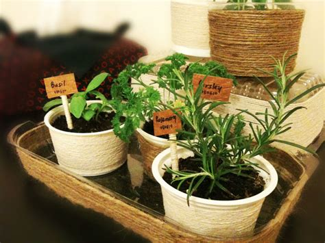 four ideas to start herb garden using container