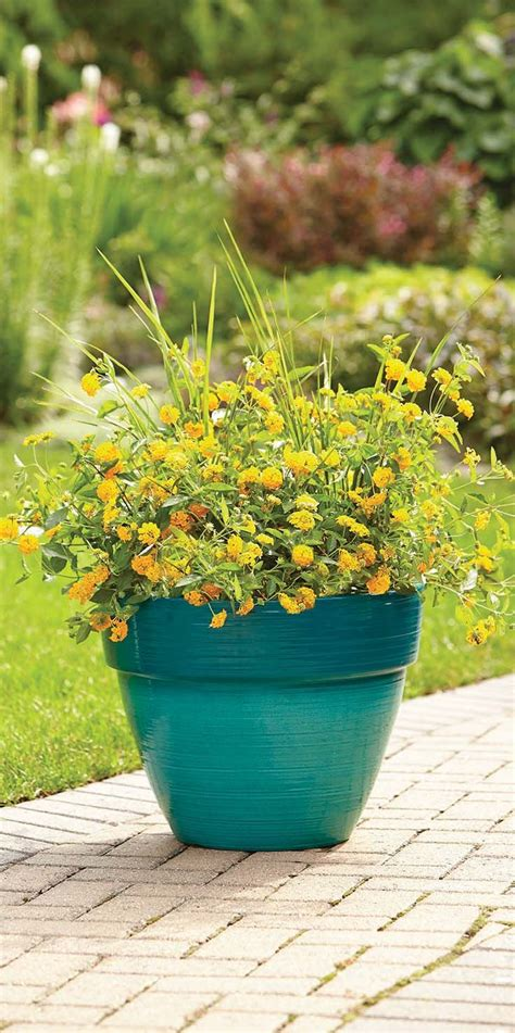 better homes and gardens planters better homes and gardens dubai 15 quot decorative resin
