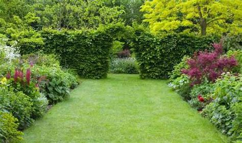 Alan Titchmarsh Five Steps Guide For A Manicured Lawn