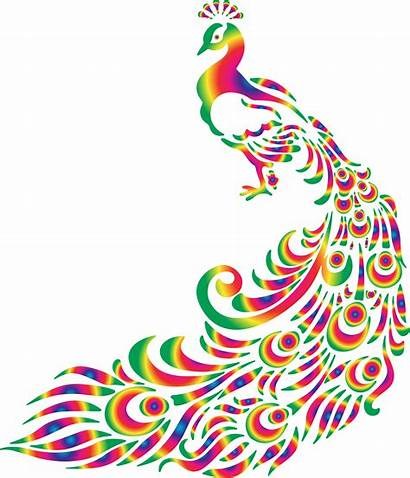 Peacock Clip Clipart Svg Colorful Cliparts Peacocks