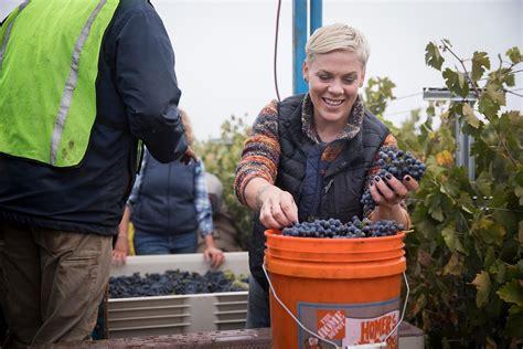pinks secret vineyard sfchroniclecom