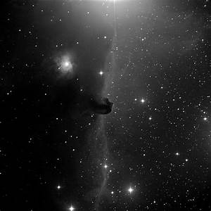 Horsehead nebula in Orion black-and-white - Sky & Telescope