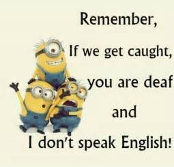 minions sprüche top 39 funniest minions pictures quotes and humor