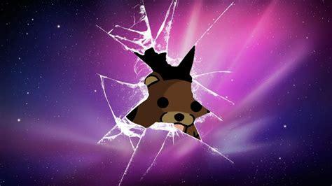 teddy  broken screen hd broken screen wallpapers