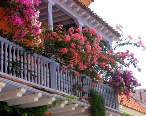 coperture balconi pergole e tettoie da giardino