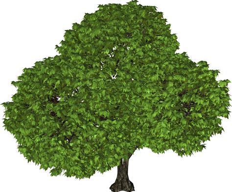 Во франции изобрели ветрогенератор в виде дерева фото новости gogetnews