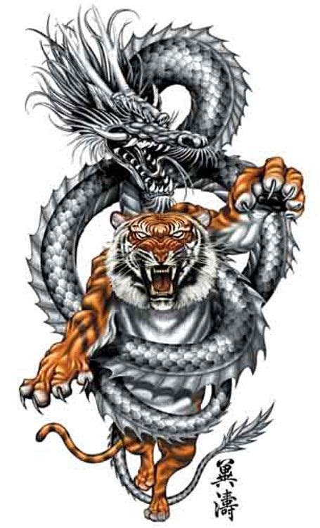 tatouage dragon  tigre  tatouage dragon