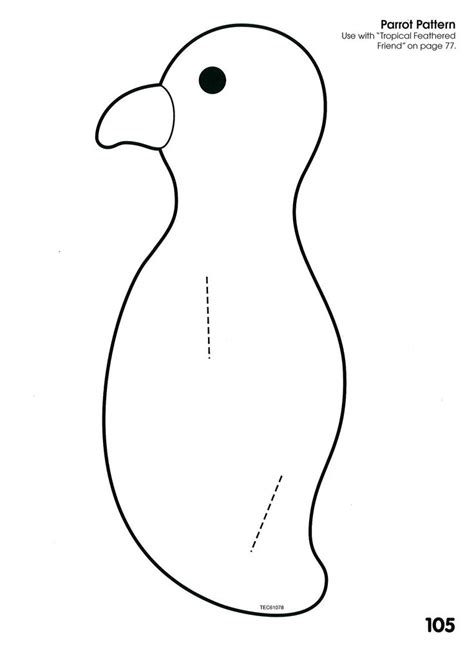 toucan body template best 25 pirate parrot ideas on pinterest toddler crafts
