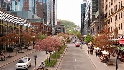 Mcgill College Avenue Ville Multidisciplinary Competition Urban