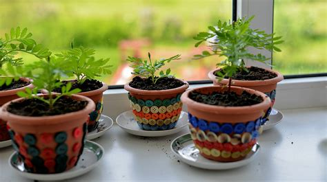 Indoor Windowsill Flowers by Grow Your Garden All Year With An Indoor Garden