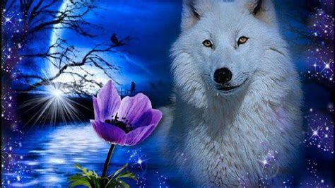 Beautiful Wolf Wallpaper Computer by Neon Wolf Wallpaper 54 Images
