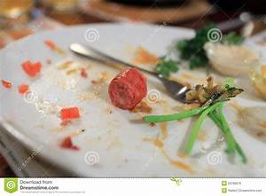 Scraps Of Food Royalty Free Stock Image - Image: 23768276