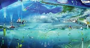 Coastal Ocean Observing System - SECOORA