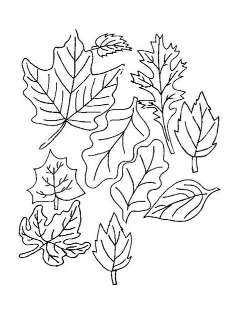 leaves coloring pages and print leaves coloring