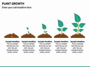 Plant Growth Powerpoint Template Ppt Slides Sketchbubble