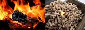 Poele A Bois Ou A Granule : comparatif po le bois b ches ou granul s ~ Melissatoandfro.com Idées de Décoration