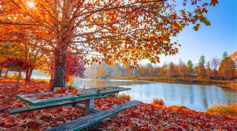 First Day Of Fall 2019 day  fall   september   fall equinox 1200 x 667 · jpeg