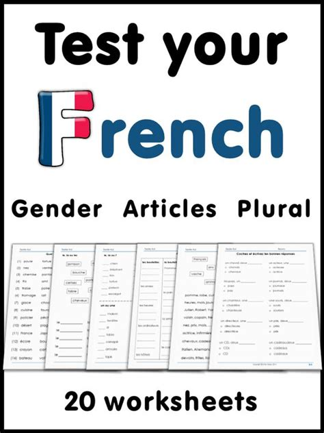 french test yourself gender articles plural student