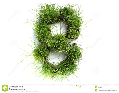 and numbers letter a made of grass stock numbers made of grass stock image image 9048531