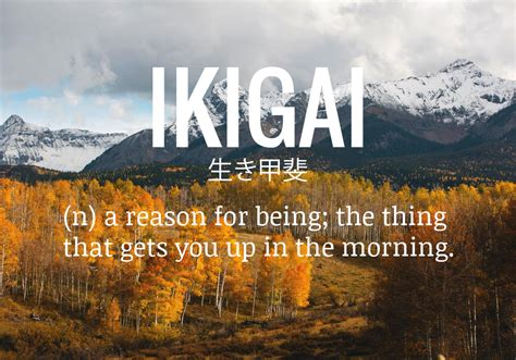 Ikigai: The Reason You Get Up In The Morning