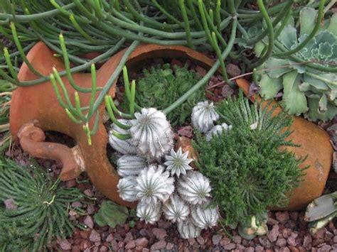 Incredible Broken Pot Ideas Recycle Your Garden