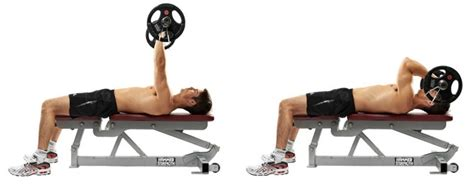 Bench Or Dumbbell Press by Best Triceps Exercises Crazy Bulk Bodybuilding