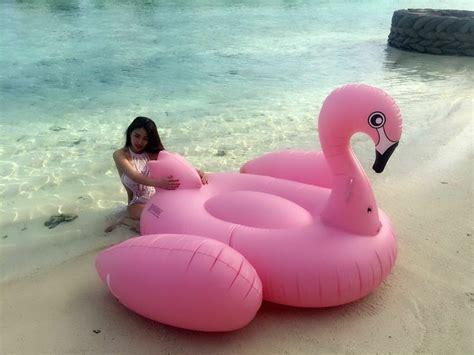 Summer Giant Inflatable Unicorn Flamingo Swan Floats Swim