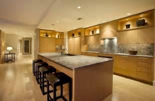 kitchen task lighting ideas bamboo floor for contemporary kitchen lighting design