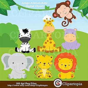 Jungle Animals Baby Digital Clipart / Safari Animals Clip ...