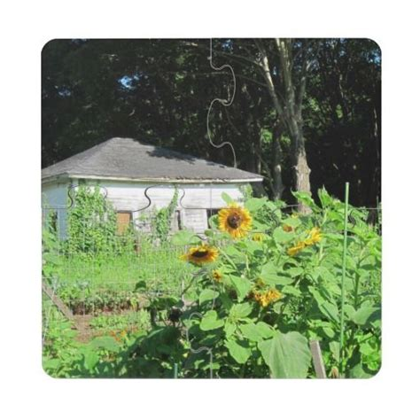 country shed puzzle coaster shed coasters sunflower images