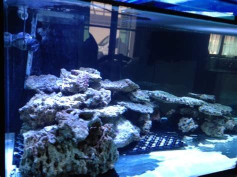 l aquarium fait 200 centim 232 tres de et 120 centim 232 tre de large avec une hauteur de 80