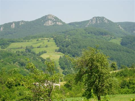 kozara national park wikiwand