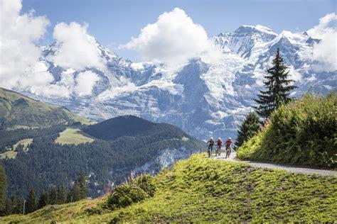 jungfrau und löwe mountainbike trails und freeride strecken in der